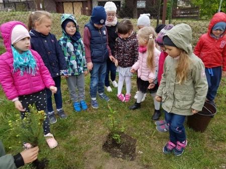 9.05.2019 Co możemy zrobić dla Ziemi - sadzenie drzew w ogrodzie przedszkolnym