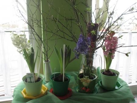 Zielony ogródek