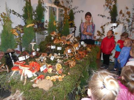 2019.10.04 - Wycieczka do Sanepidu na ,,Wystawę  grzybów ''
