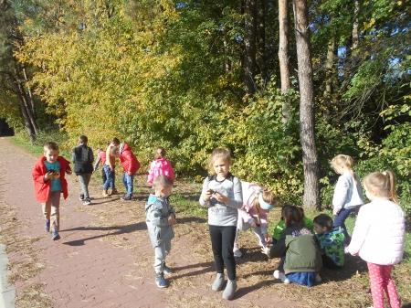 2019.10.14 - Wycieczka do lasu- obserwacja piękna jesieni.